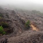 Constantia Nek bridle path 2