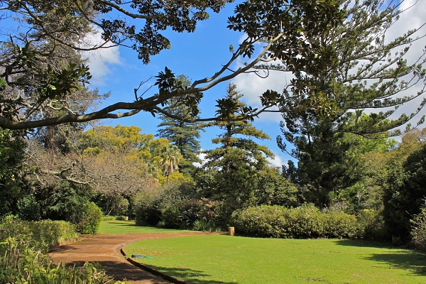 Have your say in the City Parks Development and Tree Policy