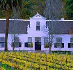 cape wine farm